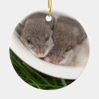 So Sleepy Baby Mice Ceramic Ornament