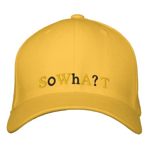 So What? - a hat Embroidered Hat