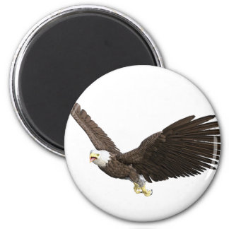 Soaring Bald Eagle Magnet