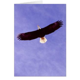 Soaring Eagle Greeting Card