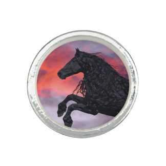 """Soaring""  Horse Ring"