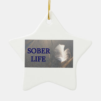 Sober life Feather Ceramic Star Decoration