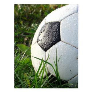 Soccer~ Foot Ball in field Postcard