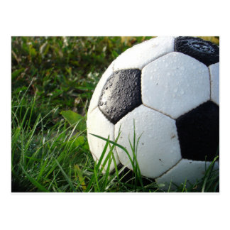 Soccer~ Foot Ball in field Postcard