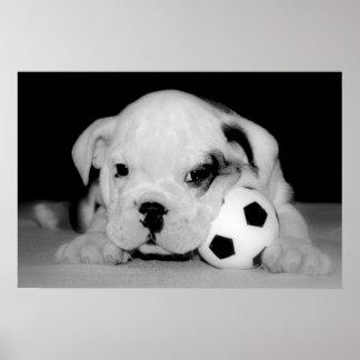 """Soccer Puppy"" English Bulldog Poster"