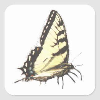 Social Butterfly Stickers