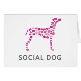 Social Dog Media Blank Notecard