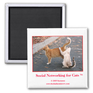 Social Networking for Cats Magnet
