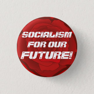 """Socialism for our Future!"" Button"