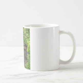 Soco Falls Coffee Mug