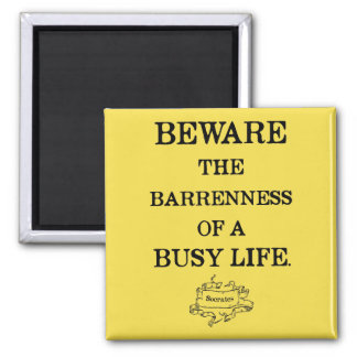 Socrates '...barrenness of a busy life' Quote Magnet