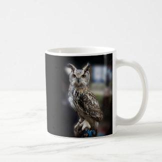 Socrates Quote Eagle Owl Coffee Mug