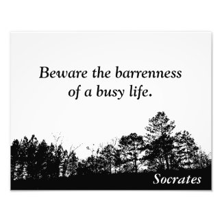Socrates - quote print photograph