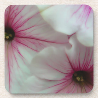Soft and delicate Pink Petunias Coaster