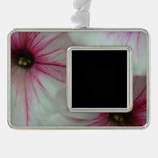 Soft and delicate Pink Petunias Silver Plated Framed Ornament