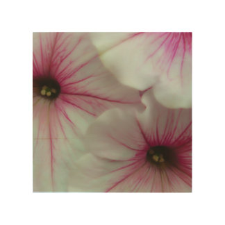 Soft and delicate Pink Petunias Wood Wall Decor