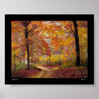 Soft Autumn Rain Poster