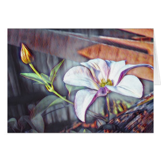 Soft clematis cottage flower with bud card