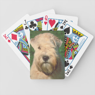 Soft Coated Wheaten Terrier Dog Playing Cards