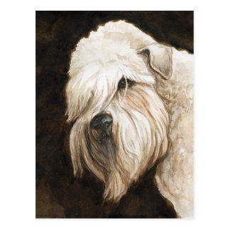 Soft Coated Wheaton Terrier Dog Art Post Card