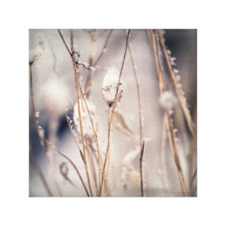 Soft Delicate Dried Winter Stems and Wild Flowers Canvas Print