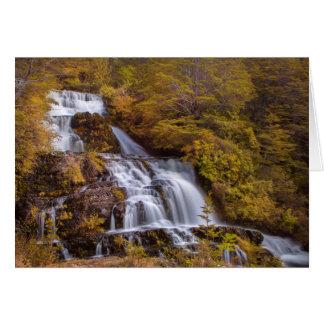 Soft Falls Card