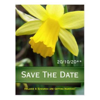 Soft Focus Daffodil Personalized Wedding Postcard