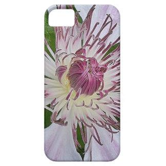 Soft Fuchsia iPhone 5 Cases