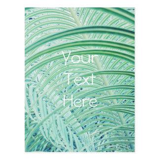 Soft Green Plant Palm Leaf Postcard