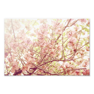 Soft Pastel Floral Branches Photographic Print