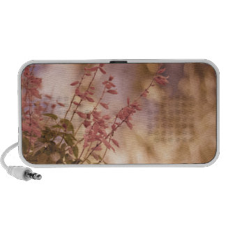 Soft Pastel Floral Branches Portable Speaker