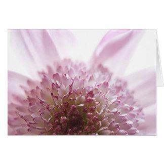 Soft Pastel Flower Photograph Card