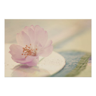 Soft Pink Cherry Blossom Flower Poster