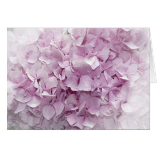 Soft Pink Hydrangea Blossom Card