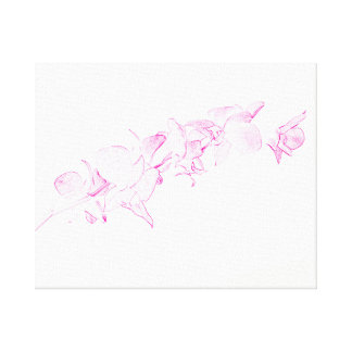 Soft Pink Orchids Canvas Print