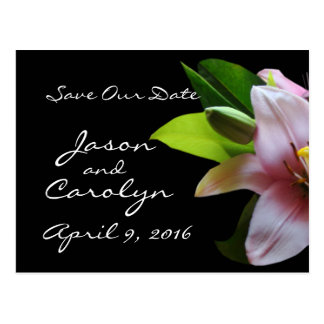 Soft Pk Lily- customize any occasion Postcard