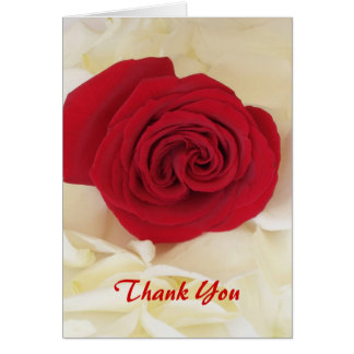 Soft Red Rose Thank You Cards