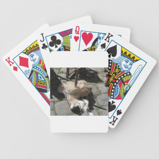 Soft rolls of wool called rovings or rolags bicycle playing cards