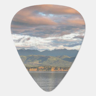 Soft Sunset Guitar Pick