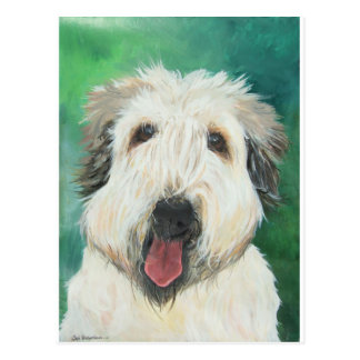 Soft Wheaton Terrier dog images Postcard