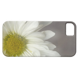 Soft White Daisy iPhone 5 Case-Mate