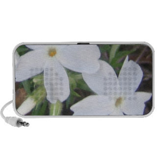 soft white floral   Doodle speakers