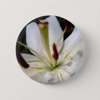 Soft White Lily Up Close 6 Cm Round Badge