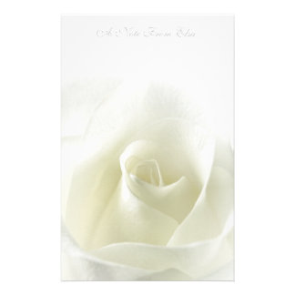 Soft White Rose  Stationery