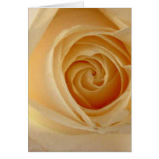 Soft Yellow Rose Card