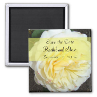 Soft Yellow Rose Save the Date Square Magnet