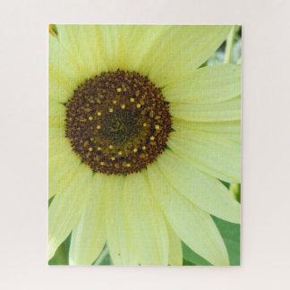 Soft Yellow Sunflower Jigsaw Puzzle