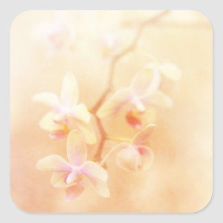Softly Faded Orchids Square Sticker