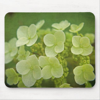 Softly Hydrangeas Mousepad
