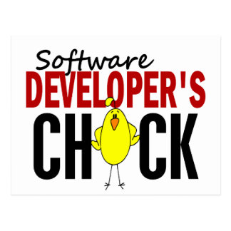 Software Developer's Chick Postcard